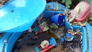 Children's toys collecting water and dirt that helps mosquitoes breed
